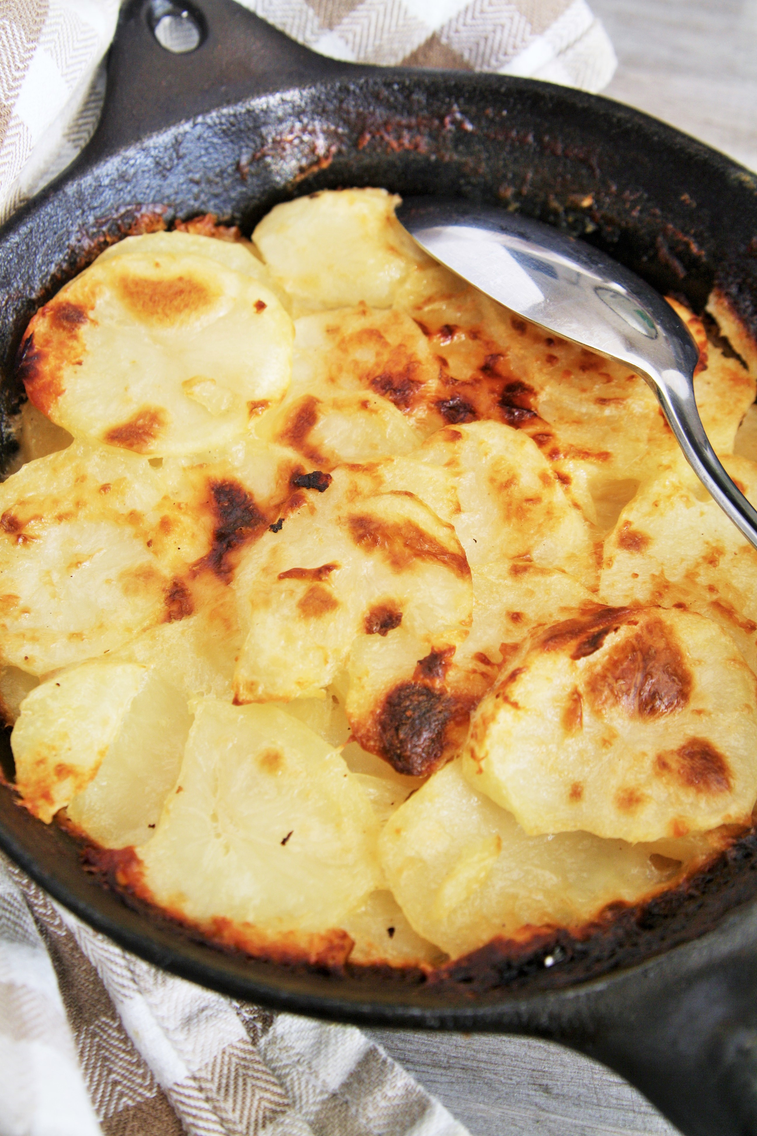 Three Cheese Potato Gratin - The Tasty Bite